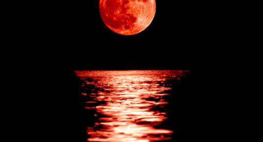 BLOOD MOONS AND THE END